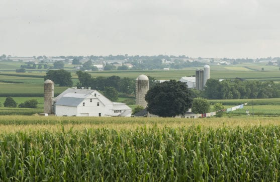 Amish Farmland Tour